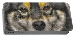 Portable Battery Charger featuring the photograph Shiba Inu by Dennis Baswell