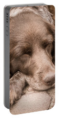 Shishka Dog Dreaming The Day Away Portable Battery Charger