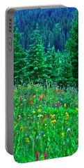 Shrine Pass Wildflowers Portable Battery Charger by Jeremy Rhoades