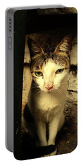Shy Cat Portable Battery Charger by Salman Ravish