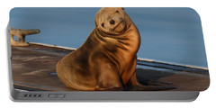 Shy Sea Lion Pup  Portable Battery Charger