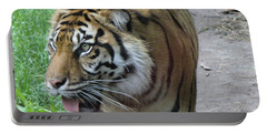 Portable Battery Charger featuring the photograph Siberian Tiger by Lingfai Leung