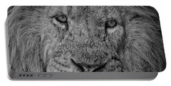 Silver Lion Portable Battery Charger