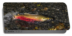Silver Salmon Spawning Portable Battery Charger