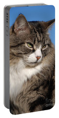 Silver Tabby Cat Portable Battery Charger