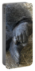 Portable Battery Charger featuring the photograph Silverback Toes by Robert Meanor