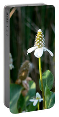 Portable Battery Charger featuring the photograph Simple Flower by Laurel Powell
