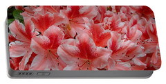 Simply Azaleas Portable Battery Charger