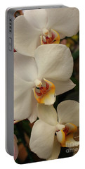 Portable Battery Charger featuring the photograph Cascade Of White Orchids by Dora Sofia Caputo Photographic Art and Design