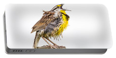 Singing Meadowlark 3rd Of 3 Portable Battery Charger