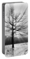 Single Leafless Tree In Winter Forest Portable Battery Charger