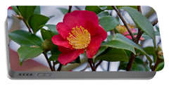 Single Petal Red Camellia Flowers Art Print Portable Battery Charger