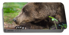 Portable Battery Charger featuring the photograph Sleeping Bear by Chris Scroggins