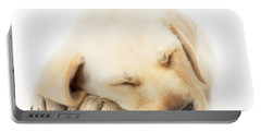 Sleeping Labrador Puppy Portable Battery Charger