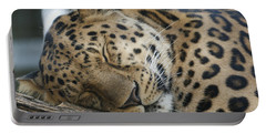 Sleeping Leopard Portable Battery Charger