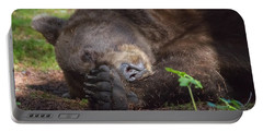 Portable Battery Charger featuring the photograph Sleepy Head by Chris Scroggins