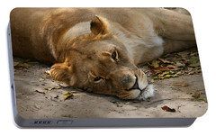 Portable Battery Charger featuring the photograph Sleepy Lioness by Ann Lauwers