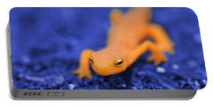 Sly Salamander Portable Battery Charger by Luke Moore