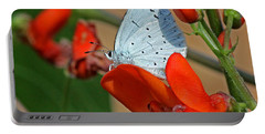 Small Blue Butterfly Portable Battery Charger