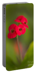 Small Red Flowers With Blurry Background Portable Battery Charger