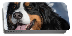Smiling Bernese Mountain Dog In Winter Snow Portable Battery Charger