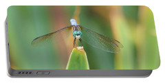 Smiling Dragonfly Portable Battery Charger by Karen Silvestri