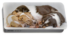 Smooth Collie Puppies Taking A Nap Portable Battery Charger