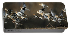 Snow Buntings Taking Flight Portable Battery Charger