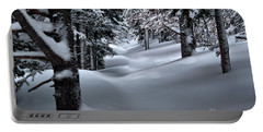 Snow Covered Trail Portable Battery Charger