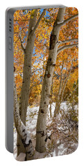 Snowy Aspen Grove Portable Battery Charger