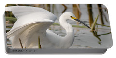 Portable Battery Charger featuring the photograph Snowy Egret by Doug Herr