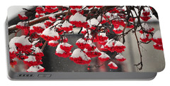 Portable Battery Charger featuring the photograph Snowy Mountain Ash Berries by Fran Riley