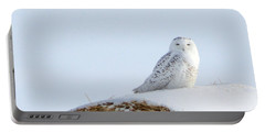 Portable Battery Charger featuring the photograph Snowy Owl by Alyce Taylor