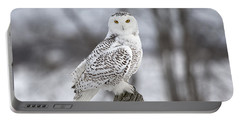 Snowy Owl Portable Battery Charger by Eunice Gibb