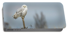 Snowy Owl On Fence Post 2 Portable Battery Charger