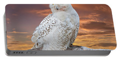 Snowy Owl Perched At Sunset Portable Battery Charger