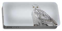 Snowy Owl Perfection Portable Battery Charger by Cheryl Baxter