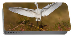 Portable Battery Charger featuring the photograph Snowy Wingspread by Bryan Keil