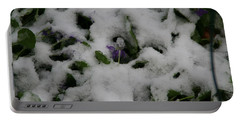 Portable Battery Charger featuring the photograph So Much For An Early Spring by David S Reynolds
