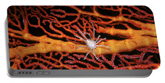 Soft Coral Crab On Red Gorgonian Portable Battery Charger