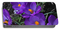 Portable Battery Charger featuring the photograph Soft Purple Crocus by Judy Palkimas