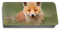 Softfox -young Fox Kit Lying In The Grass Portable Battery Charger