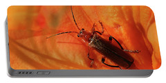 Soldier Beetle Portable Battery Charger
