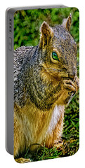 Some Squirrels Are Big Portable Battery Charger