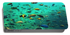 Something Fishy Portable Battery Charger