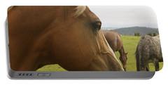 Sorrel Horse Profile Portable Battery Charger by Belinda Greb