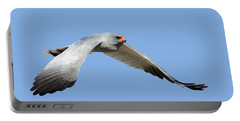 Southern Pale Chanting Goshawk In Flight Portable Battery Charger