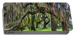 Spanish Moss Portable Battery Charger