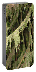 Portable Battery Charger featuring the photograph Spanish Moss In Olympic National Park by Connie Fox