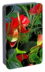 Portable Battery Charger featuring the photograph Spathiphyllum Flowers Peace Lily by A Gurmankin